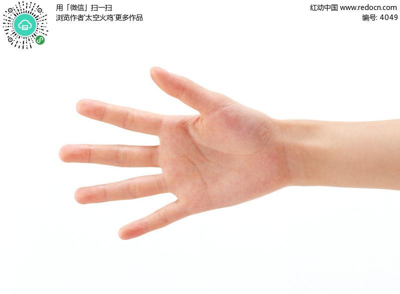 手掌图片大全,正常颜色手掌图片,手掌图片看病,手掌 ...