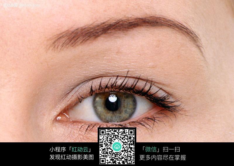 美女的眼睛112图片编号:5601