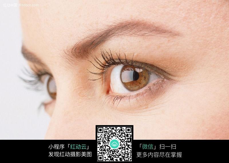 侧看的美女眼睛176图片 人物图片素材|图片库|图库