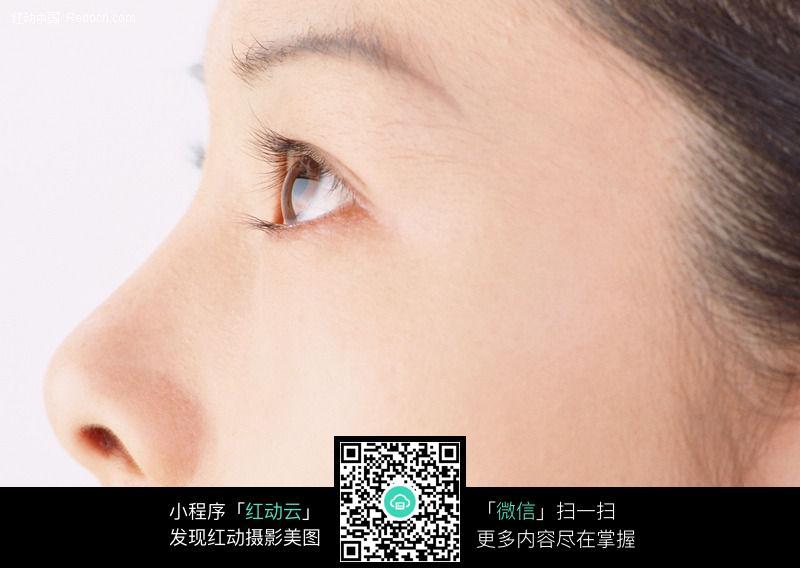美女的眼睛和鼻子174图片 人物图片素材|图片库|图库