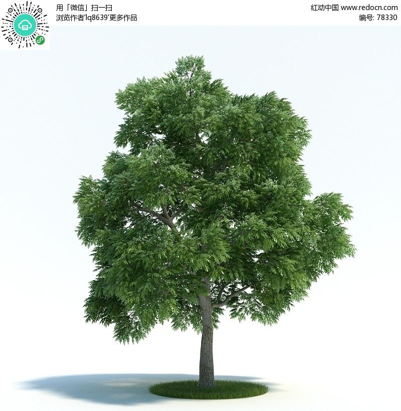 3dmax树模型 3d模型下载 3d模型素材库下载 3d模型高清图片