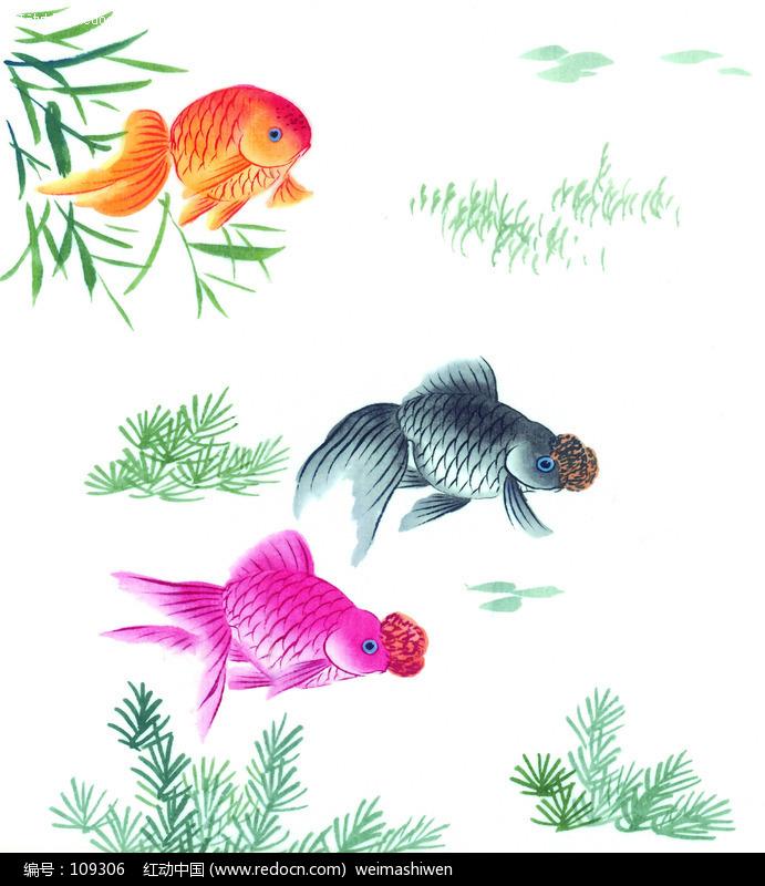 猴子骑牛图片_工笔金鱼的画法图片大全_工笔金鱼的画法图片下载