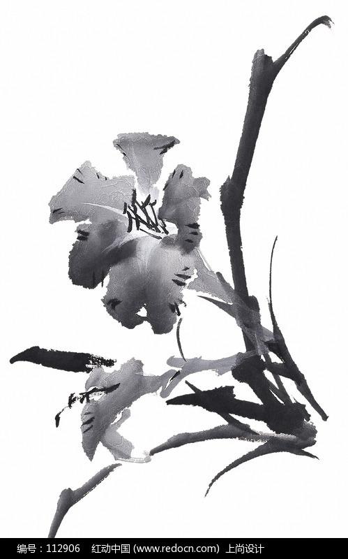 关键词:兰花花朵花卉国画水墨中国风图片图片