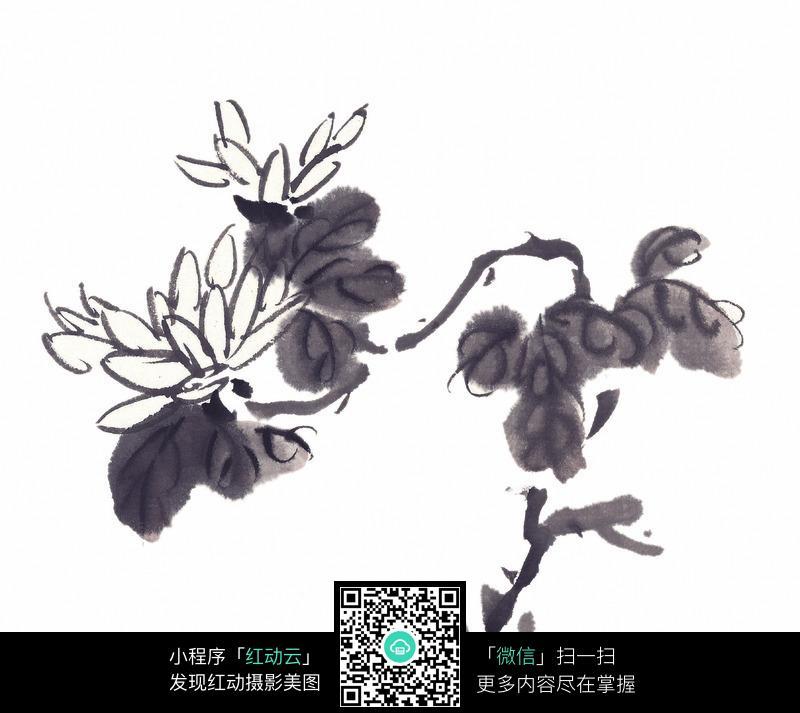 黑白国画水墨菊花图片 传统书画 吉祥图案 艺术图片下载 ...