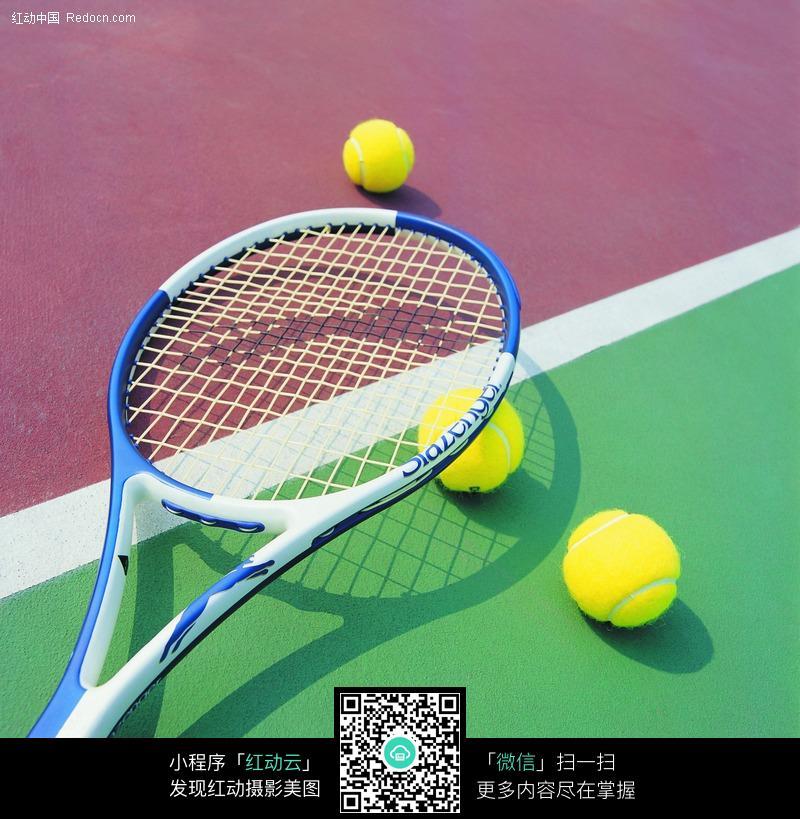 网球_网球拍矢量图_矢量素材之体育运动