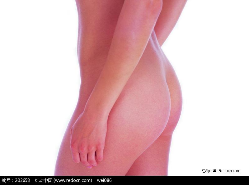 裸体女性臀部特写图片编号:202658