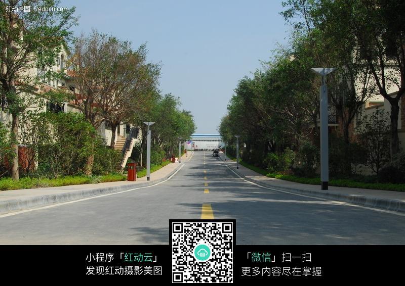小区道路图片(编号:266445)