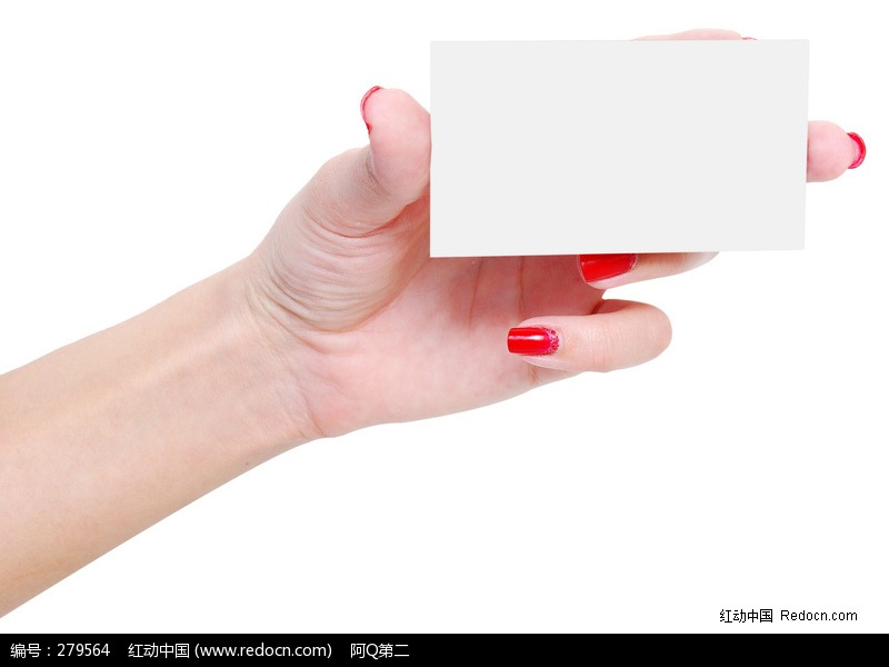 展示空白名片的女人手部图片编号:279564