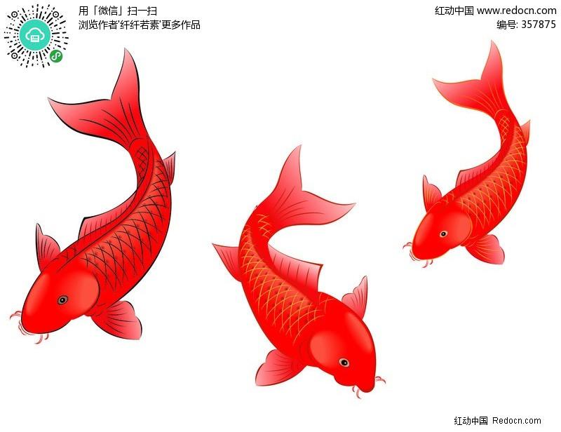 喜庆红色鱼矢量图编号:357875