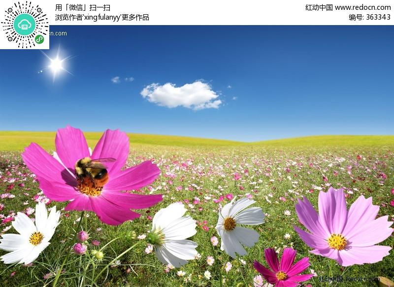 编号:363343)_风景图片