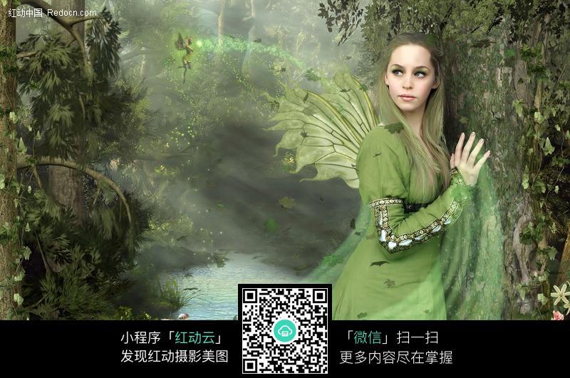 长翅膀的精灵美女图片编号:435995