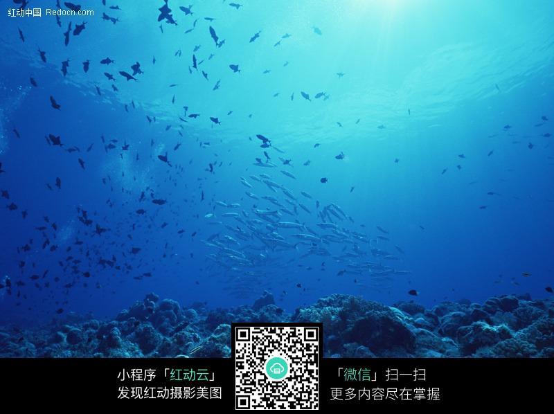 海洋世界图片编号:465869 海洋海边