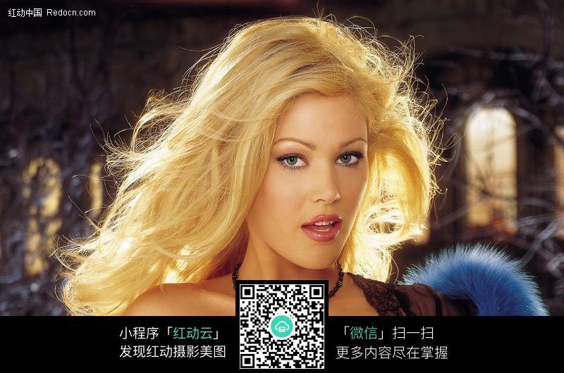 诱人的外国金发美女图片编号:483061