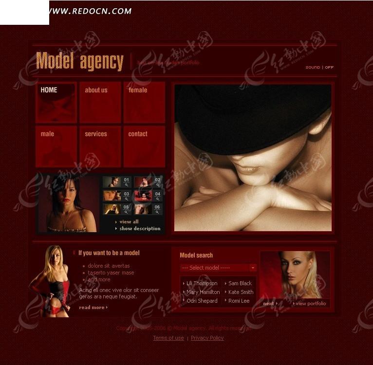 欧美模特网页模板编号:596873