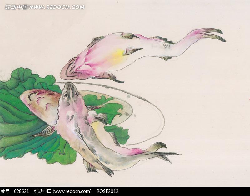 手绘画海鲜鱼