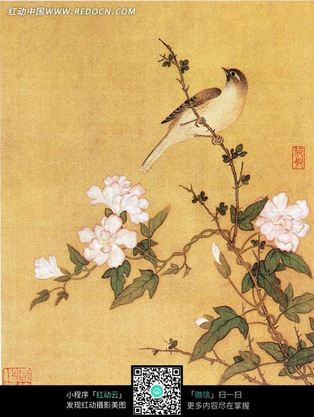 国画 花鸟花卉   花卉工笔画图片   部现代工笔画院   中国工