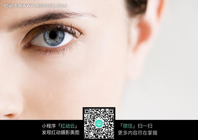 美女眼睛特写图片编号:646741