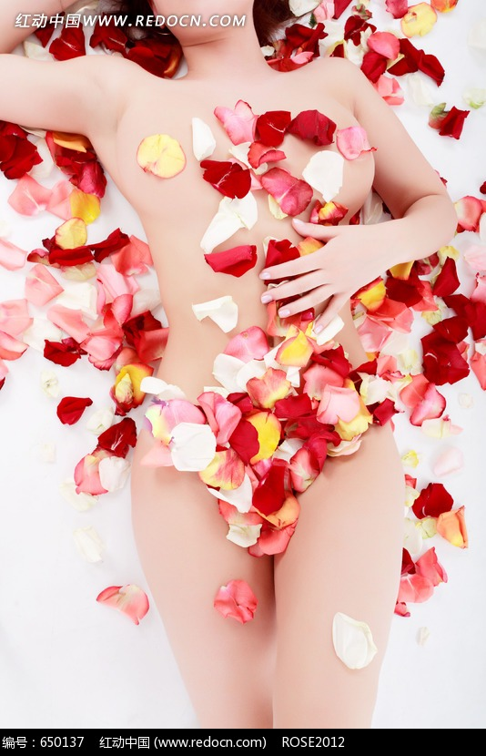 盖着花瓣的裸体美女图片素材图片编号:650137