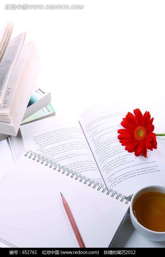 翻开的书本 笔记本 笔构成的图片
