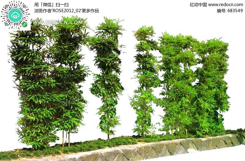 园林景观手绘立面树源文件__园林设计_环境设计_源三星招聘包装设计图片