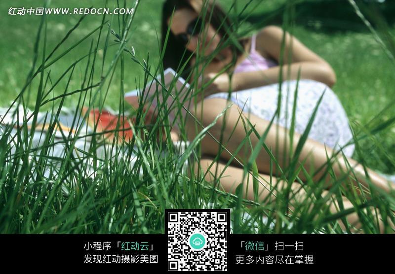 在草地上看书的美女图片 动物|植物|生物图片下