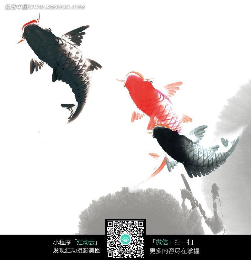 灵动的鱼水墨画图片(编号:863701)图片