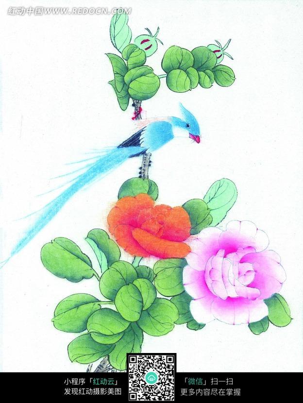 鸟 立于牡丹枝头的小鸟图片 编号 860579 书画文字 文化艺
