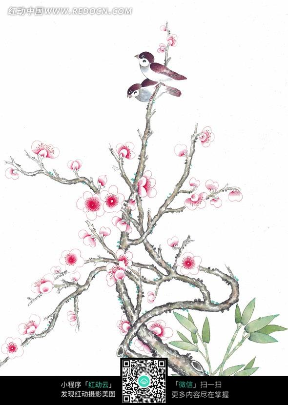 中国工笔花鸟 梅花枝头的小鸟图片 编号 860327 书画文字