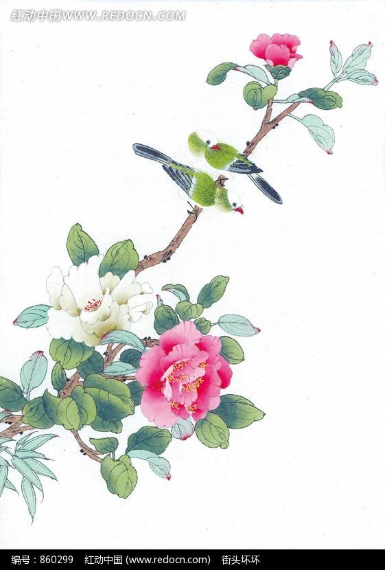 中国工笔花鸟 牡丹和鸟图片 编号 860299 书画文字 文化艺