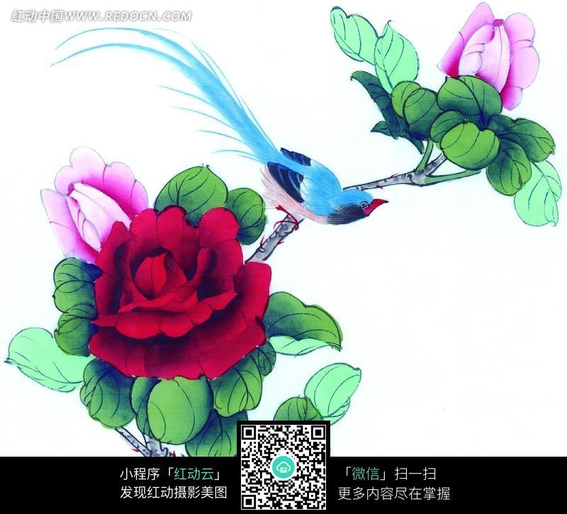 中国工笔花鸟 牡丹和飞鸟图片 编号 860277 书画文字 文化