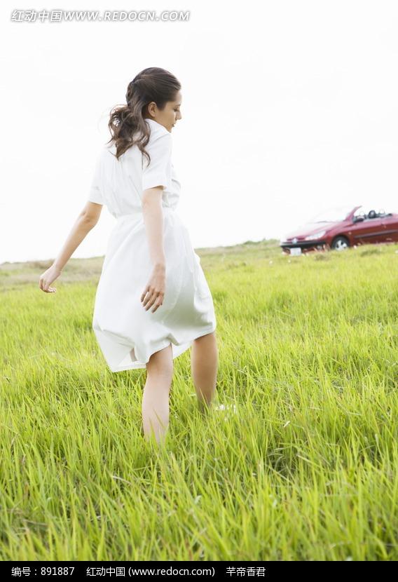在草地上白色连衣裙外国美女背影图片编号:891887