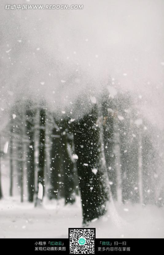 雪花飞舞的冬天 冬天雪花飞舞有你动漫 冬天雪花飞舞的画面