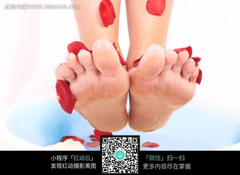 脚底板脚部特写红色花瓣足疗足浴健康养生唯美美女