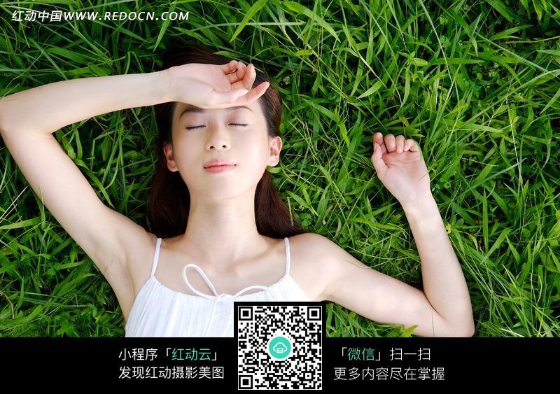 躺在草地上的美女图片编号:1047577
