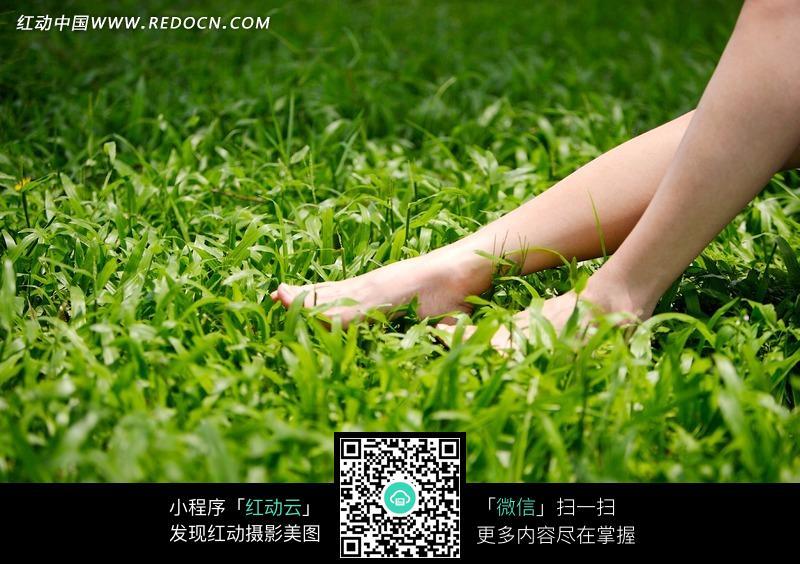 放在草地上的美女小腿图片编号:1047569