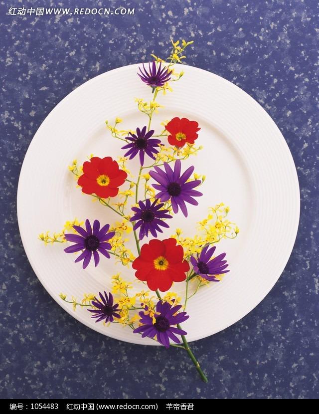 蛋糕盘子里的装饰画