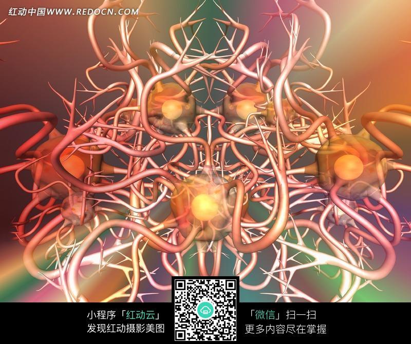 红色带树枝状触手的微生物图片 现代科技图片