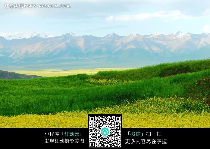 田野美景图片图片编号:1046767 自然风景