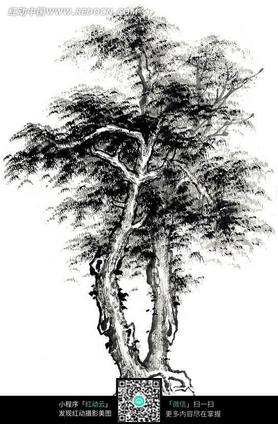 线描素材点线面_手绘一棵松树素描 _排行榜大全