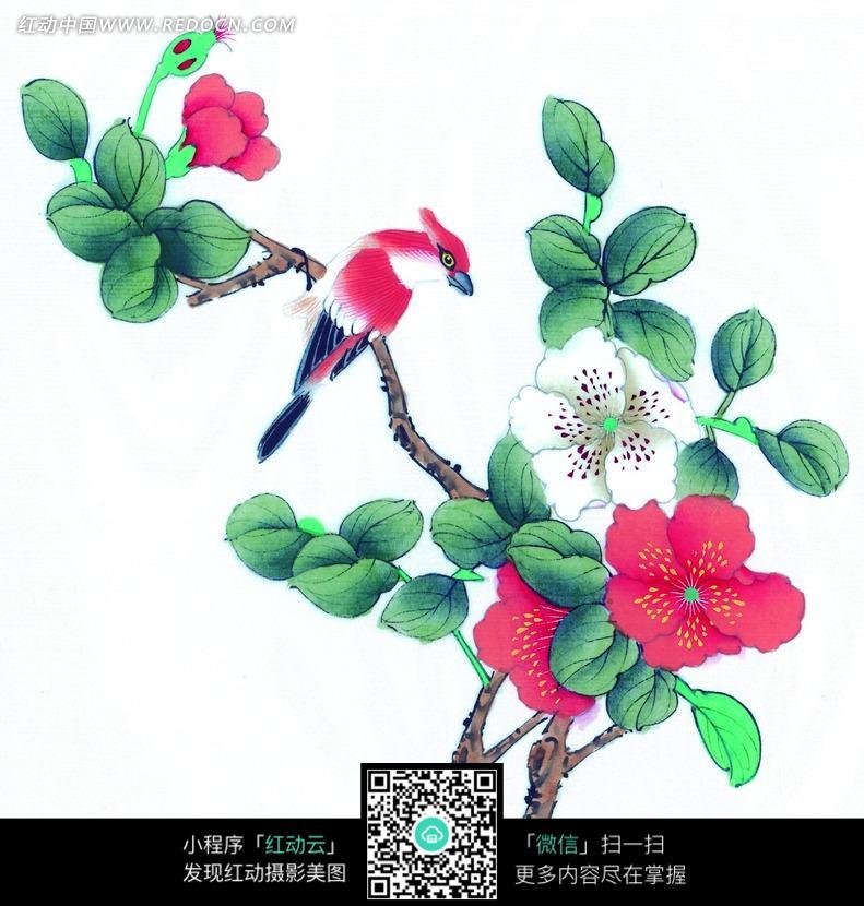 树枝上的梅花和红色小鸟国画