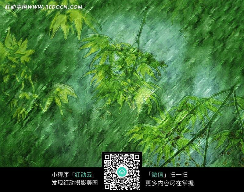 清新嫩绿 树叶水彩画