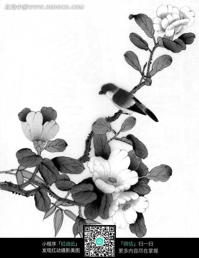 工笔画之花朵盛开的树枝上的鸟图片 传统书画 吉祥图案 艺术图片下载