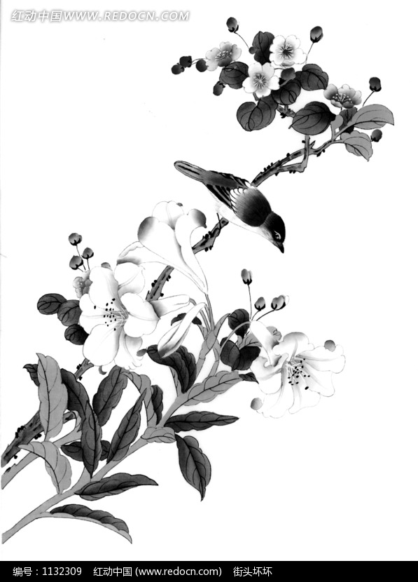 工笔画 开满花朵的树枝上的鸟