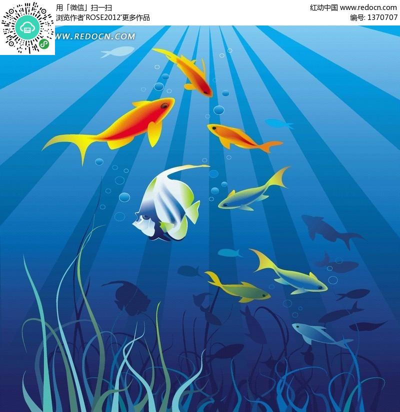 海底自由自在的小鱼图片