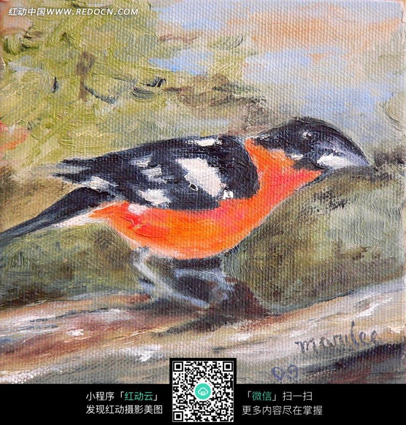 红肚子的黑色小鸟油画图片 编号 1371525 书画文字 文化艺