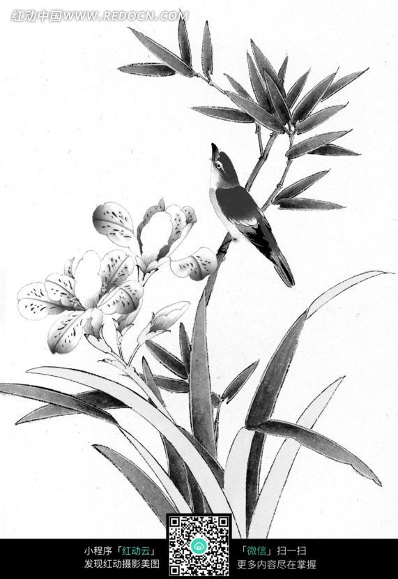 工笔画之兰花上方的鸟图片 编号 1374751 书画文字 文化艺