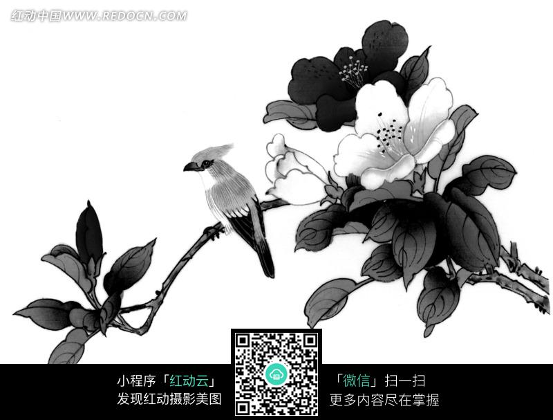 工笔画之树枝上的鸟图片 编号 1375149 书画文字 文化艺