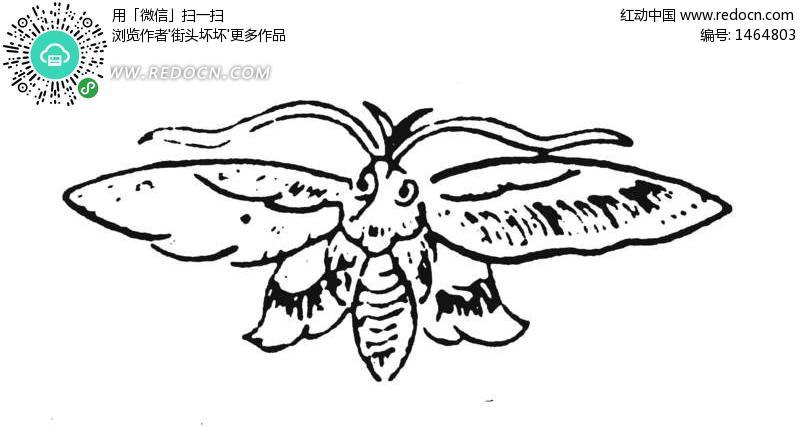 看图猜成语两个蜜蜂左到箭标左没翅膀右有翅膀