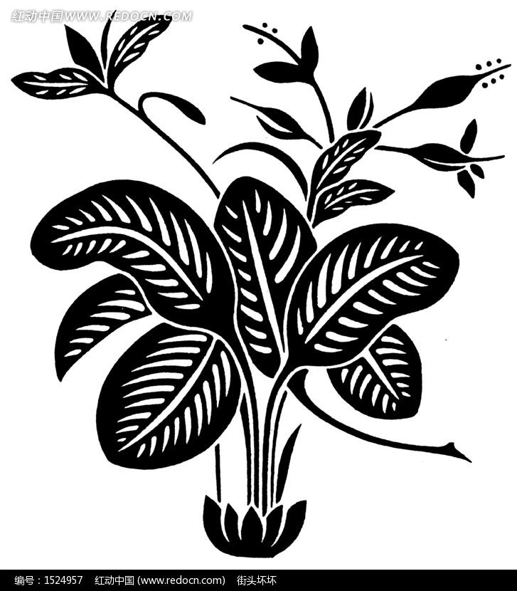 树叶画边-黑色植物叶子插画