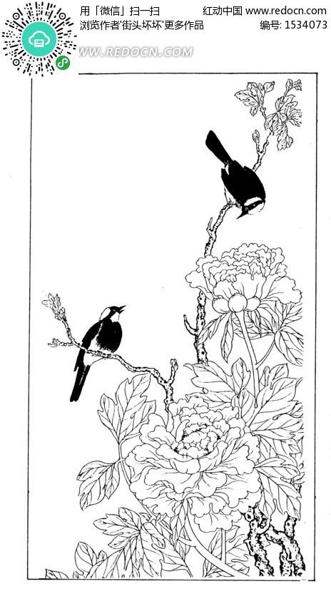 花鸟白描图设计图片